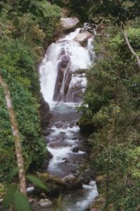 The Cloudbridge Falls and the Chirripo River