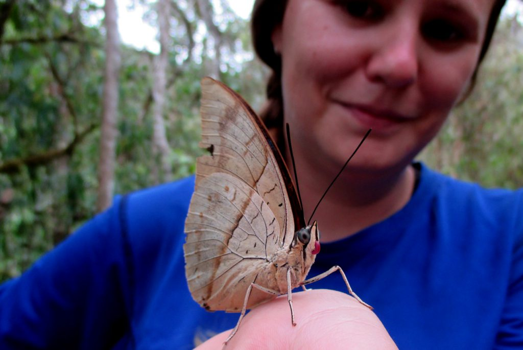 Butterfly intern showing off an Archaeopreopona butterfly.