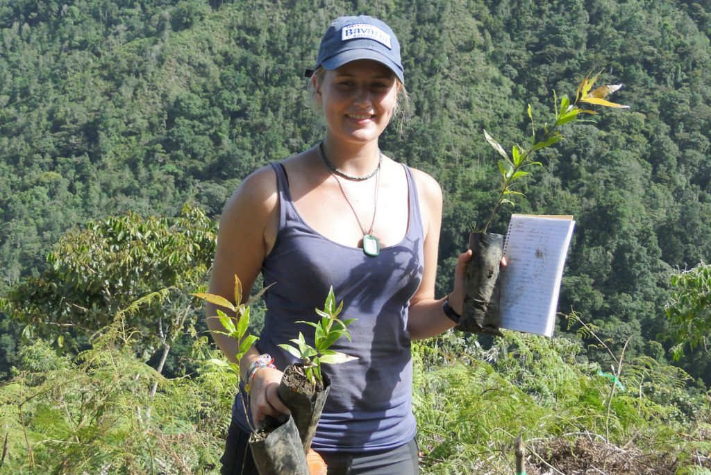 Tropical forestry researcher planting seedlings in a study plot.